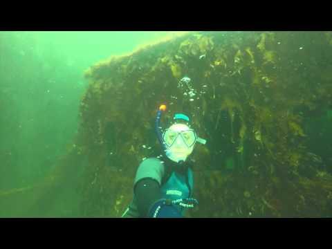 Diving Ship Wreck Denmark