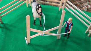 A Horse Named Rose|Schleich Horse story|