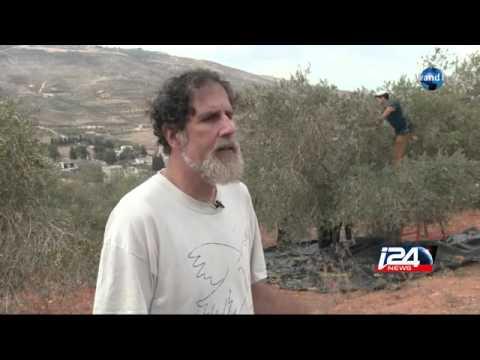 Un rabbin agressé par un juif extremiste en Cisjordanie