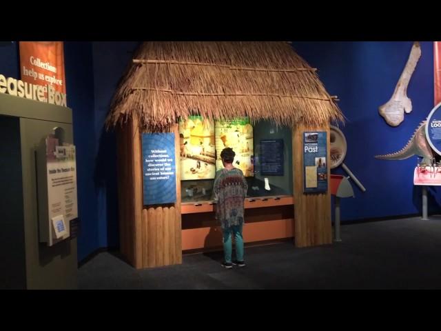 Sam Noble Museum