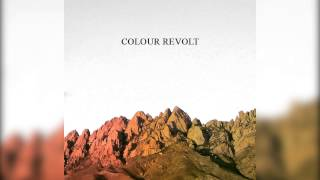 Watch Colour Revolt Our Homes Are Graves video