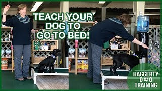 Teach Your Dog to GO TO BED!
