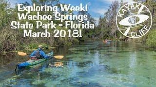 Florida Kayaking Weeki Wachee Springs River