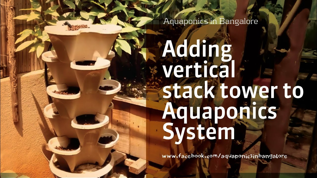 Adding Vertical Stack Tower To Aquaponics System   YouTube