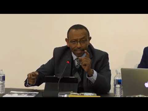 Prof  Ezekiel Gebissa and Jawar Mohammed at Geneva fear of State Collapse in Ethiopia Full