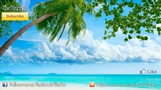 Accordion Romanian House | Melodi instrumental | Tincho (Original Mix)