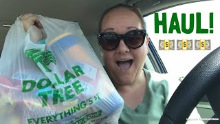 Huge Dollar Tree Haul....From My Car!!!