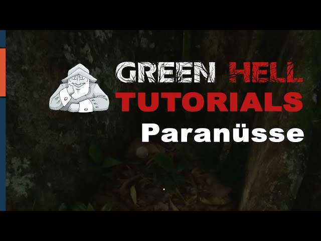 GREEN HELL - Tutorial #5 | Wo finde ich Paranüsse? | Deutsch German Tipps und Tricks
