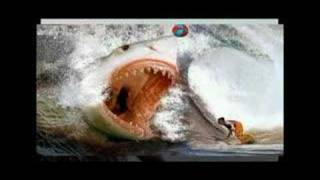 Rejin Battles The Racist Great White Shark