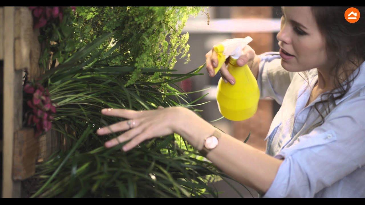 Crea tu propia jardiner a de pared en casa youtube - Crea tu propia casa ...