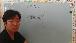 [관상학 강의] 마의상법  십이궁 제 5강 처첩궁