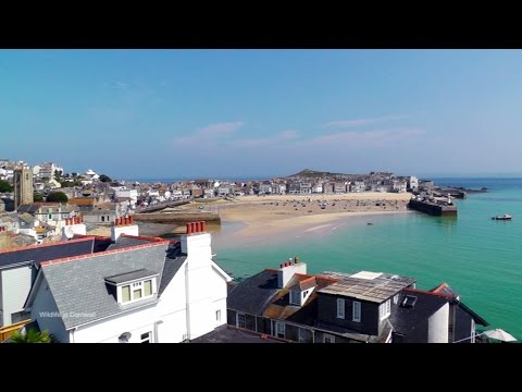 St Ives in Cornwall : Beach and Harbour On A Beautiful Sunny Day