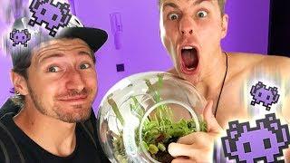 Fleischfressende Pflanzen im UFO! 😱