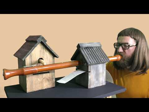 Quentin and his Birdbox Orchestra featuring his 18th Century
