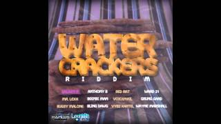 Water Crackers Riddim Mix (april 2012)