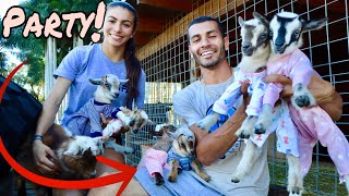 CUTE BABY GOATS PLAYING AND JUMPING IN PAJAMAS!!