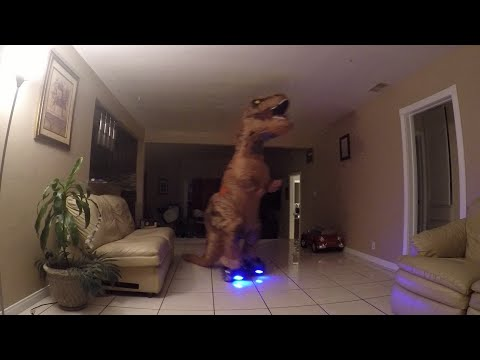 trex riding a hoverboard dinosaur on a hoverboard youtube. Black Bedroom Furniture Sets. Home Design Ideas