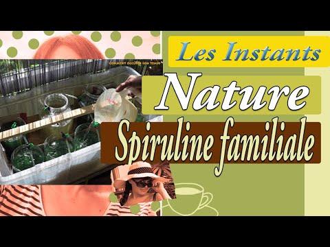 Spiruline Propriétés : Choix - Origine - Indications | Pourquoi faire une cure ?