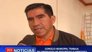 CONCEJO MUNICIPAL TRABAJA EN ORDENANZA DE SEGURIDAD ALIMENTARIA