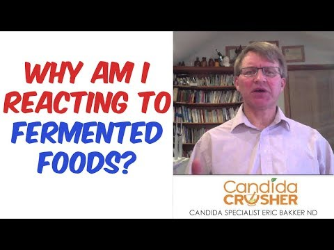 im-reacting-to-fermented-foods-help!