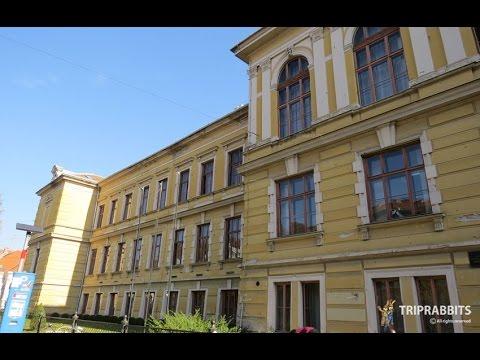Faculty of Philosophy (Osijek)
