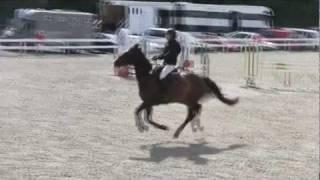 Sicilia & Dusty Dee - Bergen Horse Show 30/6-11