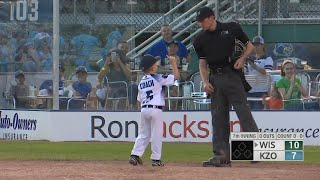 6-Year-Old Hysterically Throws Tantrum at Baseball Game