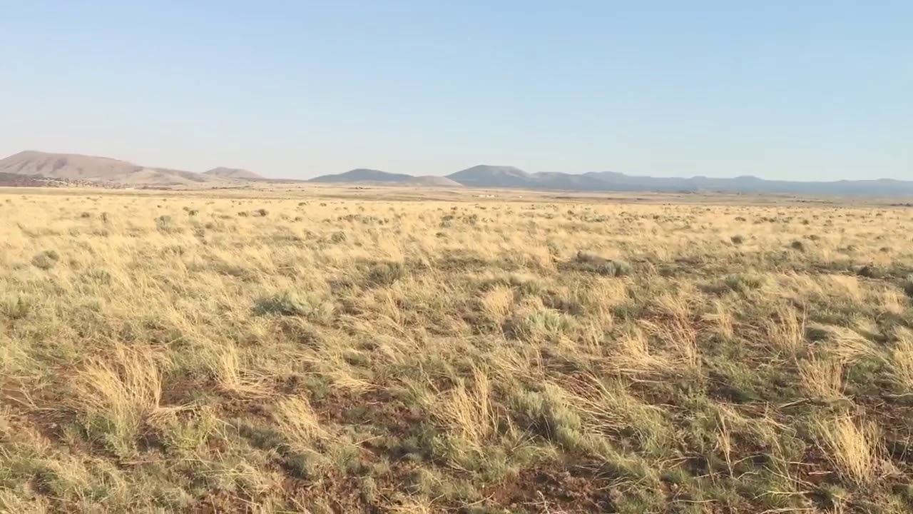 SOLD By Compass Land USA - 4.92 Acres - In Concho, Apache County AZ