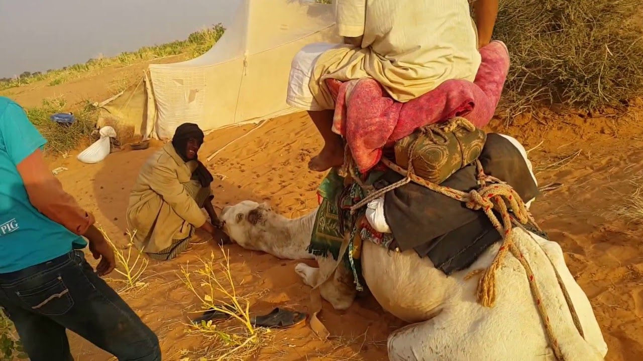 Mauretanie