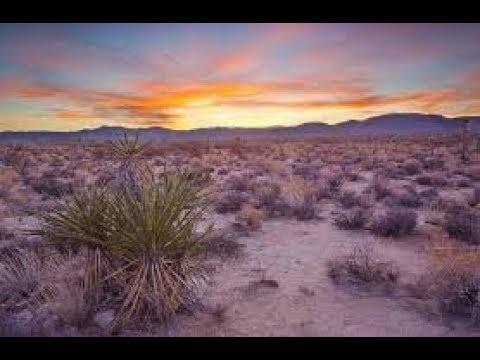 Live Like A King On This 10 Acre Lot In 29 Palms!