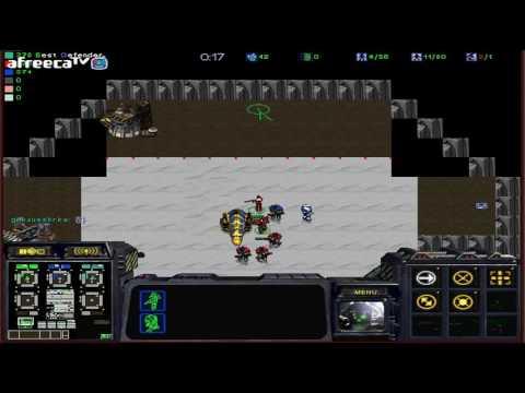 스타크래프트 유즈맵 [클로버 믹스 디펜스 #1]Clover Mix Defense(Starcraft use map)