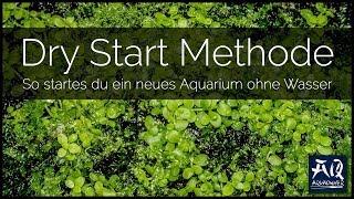 SCHRITT FÜR SCHRITT ZUM ERSTEN DRY START | Dein Becken ohne Wasser starten | AquaOwner