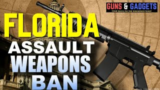 Florida's New Assault Weapons Ban Bill Explained: Its Bad!