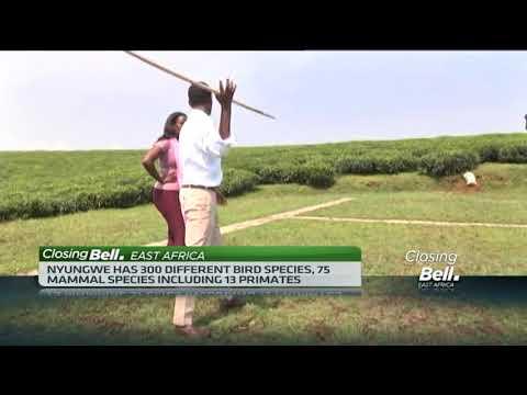 Tourism boost as Rwanda named among world's best