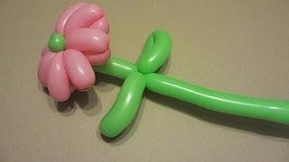 видео урок как сделать цветы из шариков