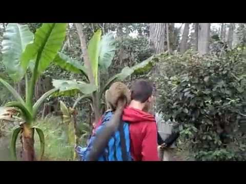 Travelling around Madagascar!
