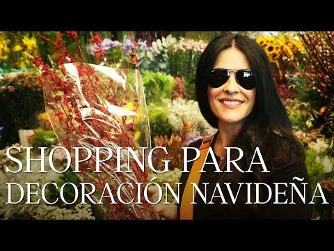 Shopping para decoración Navideña  Martha Debayle