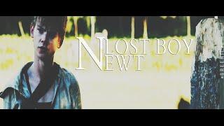 newt | lost boy