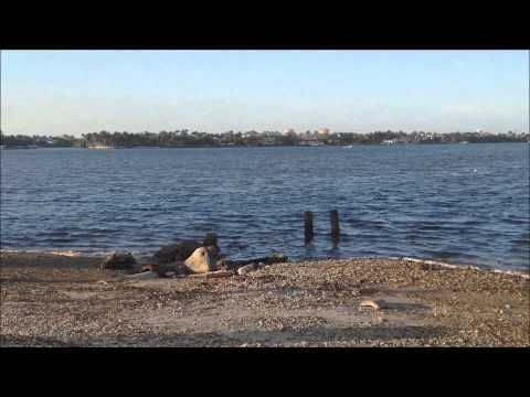 Travel Through My Window - Episode 2 - Miami, Florida - Matheson Hammock Park