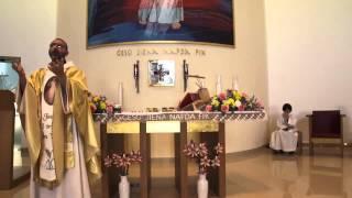 Omelija fil-Festa tal-Hniena Divina - Fr Hayden