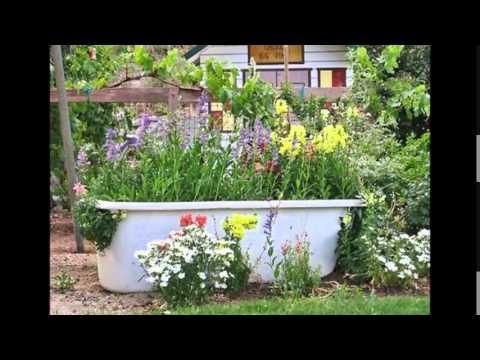 видео: Цветники своими руками в ванной, унитазе, умывальнике. Цветники на даче в сантехнике