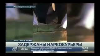 Более 22 кг наркотических средств везли два жителя Усть-Каменогорска