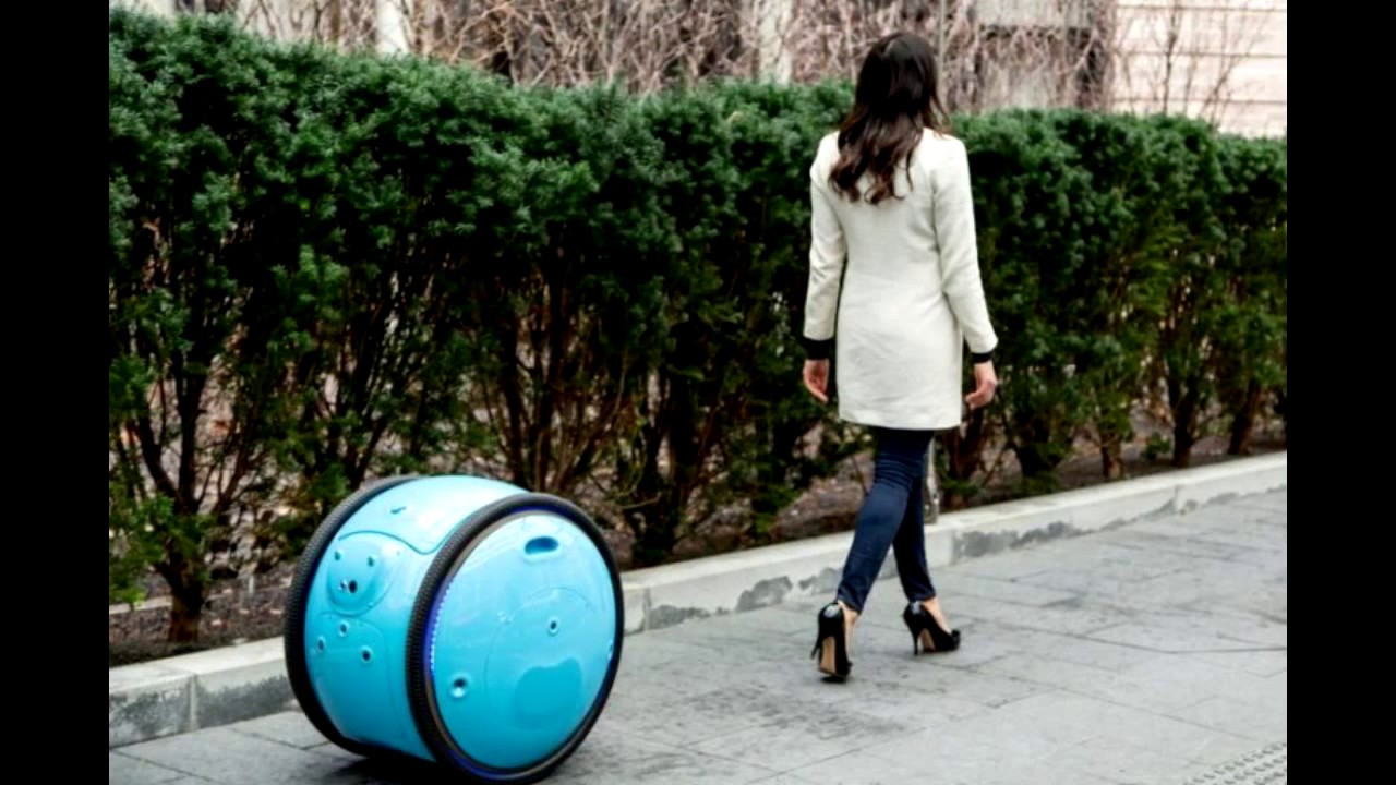 Image result for Meet Gita, your cargo-carrying robot porter