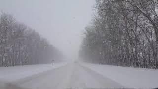 Из Бутурлиновки на Кисляй 24.11.2017 снежок