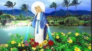 LẠY MẸ HẰNG CỨU GIÚP - Gioakim