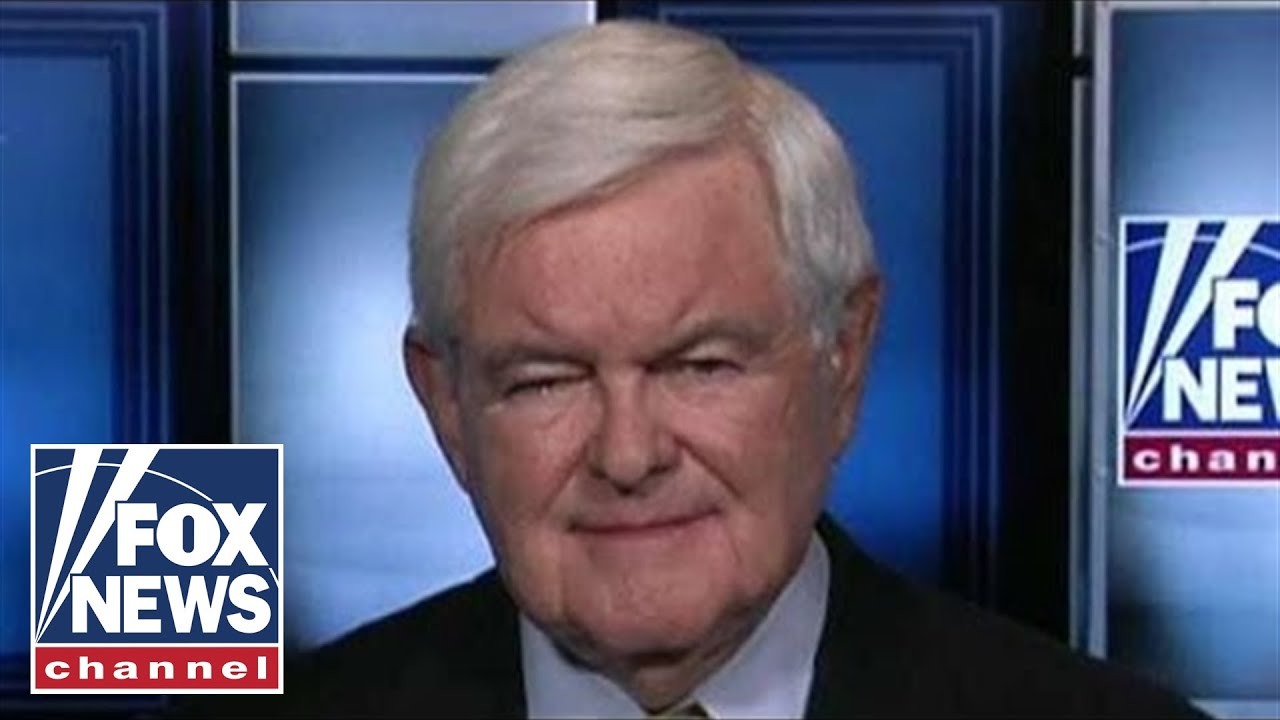 FOX News Gingrich breaks down Trump's stance on payroll tax cut