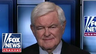 Gingrich breaks down Trump's stance on payroll tax cut