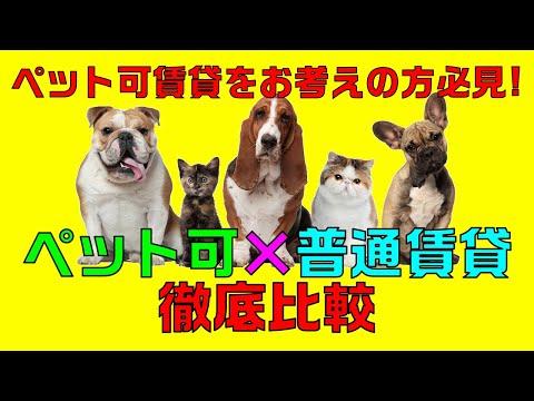 【ペット可の賃貸】ワンちゃんネコちゃんと一緒に住める賃貸