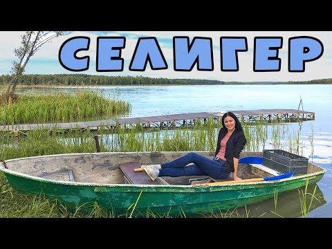 Озеро СЕЛИГЕР | Автопутешествие выходного дня. Доехали до Конца! Тверь-Осташков-Торжок