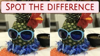 [ Brain games ] ( 3 ) Ep.017 Plants_fruits_01 | Spot the difference | photo puzzles | Healing